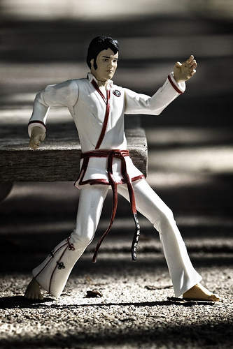 elvis-karate-61